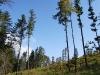 krzeszow-beskid-maly-schornisko-leskowiec-gronie-sierpien-2010-096
