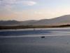jezioro-zywieckie-zbiornik-tresna-sola-zywiec-sierpien-2010-012