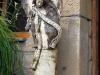 lanckorona-miasto-ruiny-zamku-szlak-sierpien-2010-013
